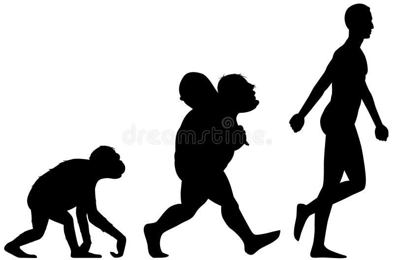 evolutionhuman royaltyfri illustrationer