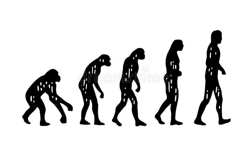 Evoluzione di teoria dell'uomo Dalla scimmia all'uomo Incisione d'annata illustrazione vettoriale