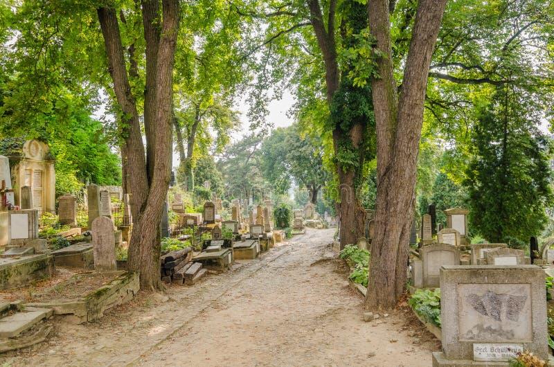 Ewangelicki cmentarz obrazy royalty free
