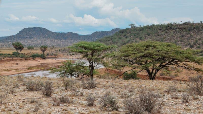 Ewaso Nyiro River in Samburu National Reserve, Kenya stock images