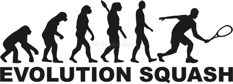 Ewolucja kabaczka tenis ilustracja wektor