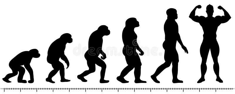 Ewolucja mężczyzna ilustracji