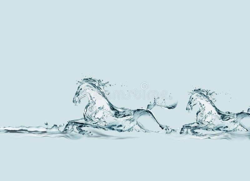 Exécution de deux chevaux de l'eau illustration stock