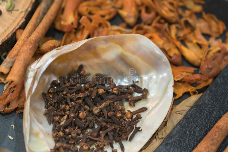 Exòtica mistura da especiaria - especiaria, ervas, pó O indiano tempera o colle fotografia de stock