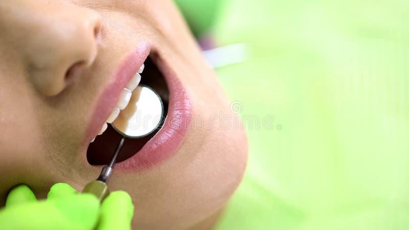 Exame de exame com espelho de boca, odontologia preventiva dos dentes incisivos do dentista imagens de stock royalty free