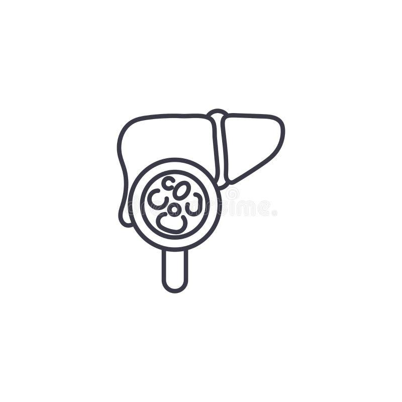 Exame do conceito linear do ícone do fígado Exame da linha sinal do fígado do vetor, símbolo, ilustração ilustração do vetor