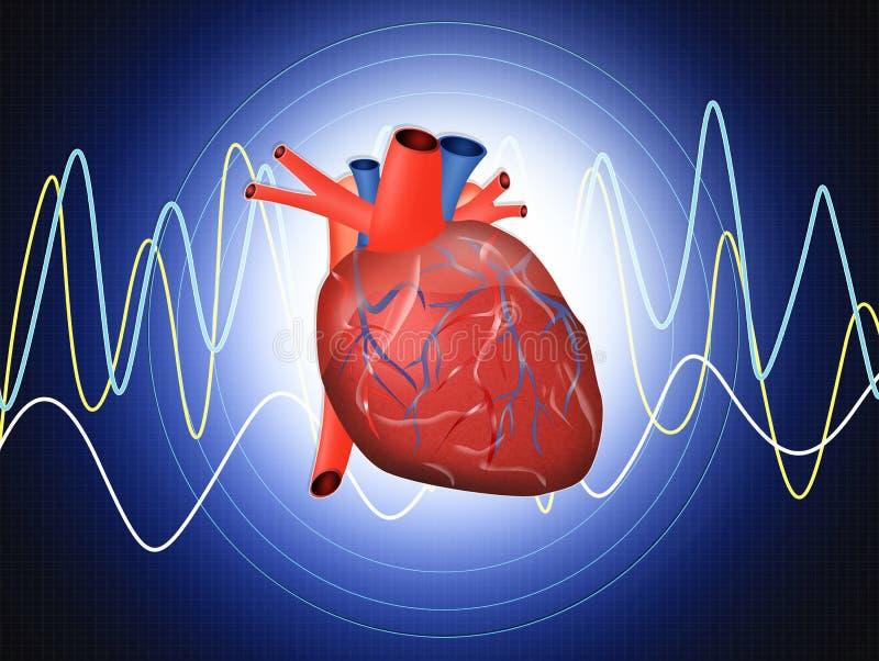 Exame do coração ilustração stock