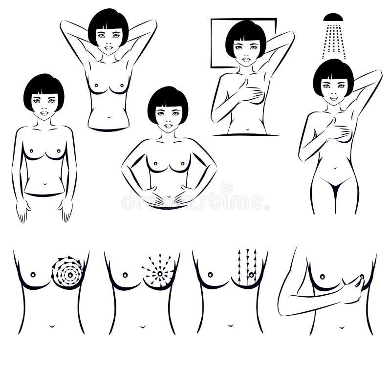 Examen del uno mismo, examen del cáncer de pecho stock de ilustración