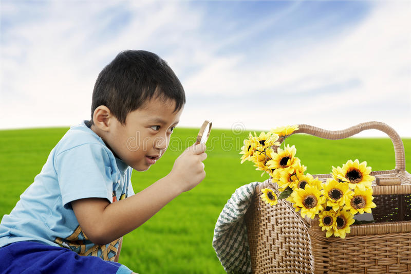 Download Examining flowers stock photo. Image of lawn, examining - 24925364