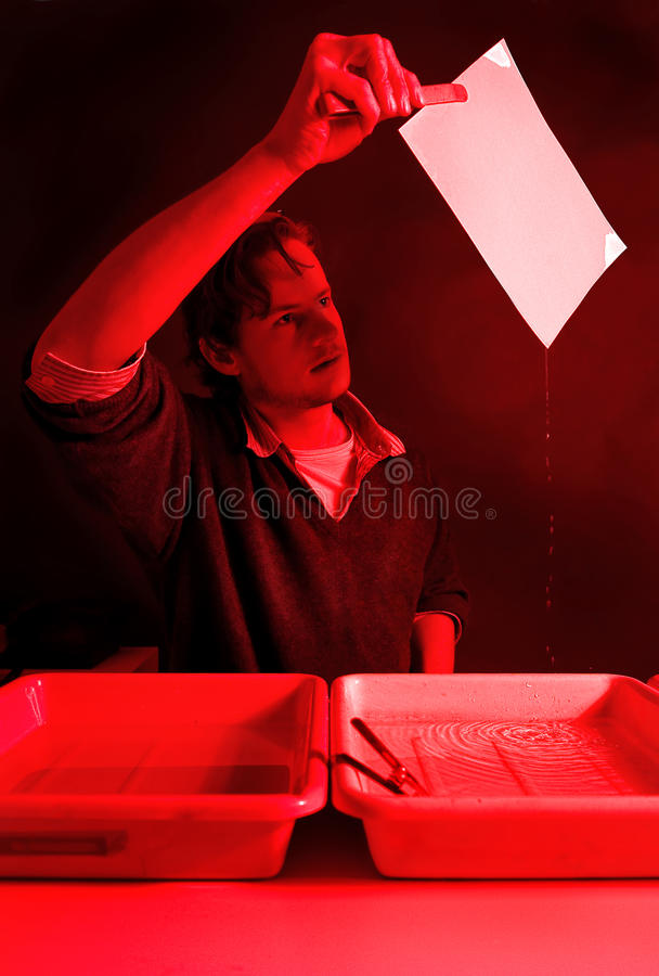 Examining a print. Photographer examining a fresh, still wet, print, directly from the stop bath in a dark room stock image