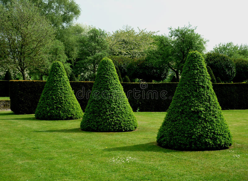 Example of topiary forming abstract shapes. stock photo