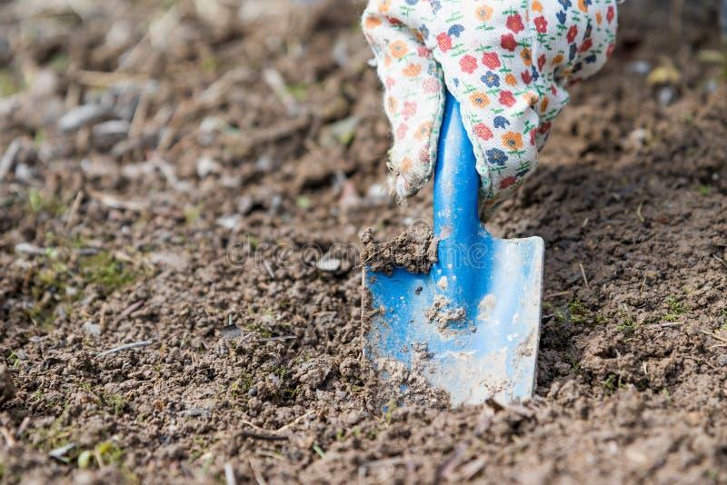 Excavación del agujero en el suelo con una cuchilla del jardín fotos de archivo