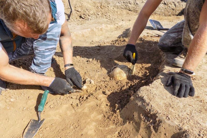 Excavaciones arqueológicas Dos arqueólogos con las herramientas que conducen la investigación sobre los huesos humanos en la tumb fotografía de archivo