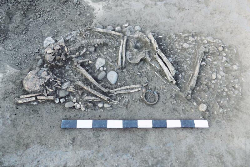 Excavaciones arqueológicas Huesos humanos de los restos del esqueleto en la tierra, con el tablón de la medida Paces de la joyerí foto de archivo
