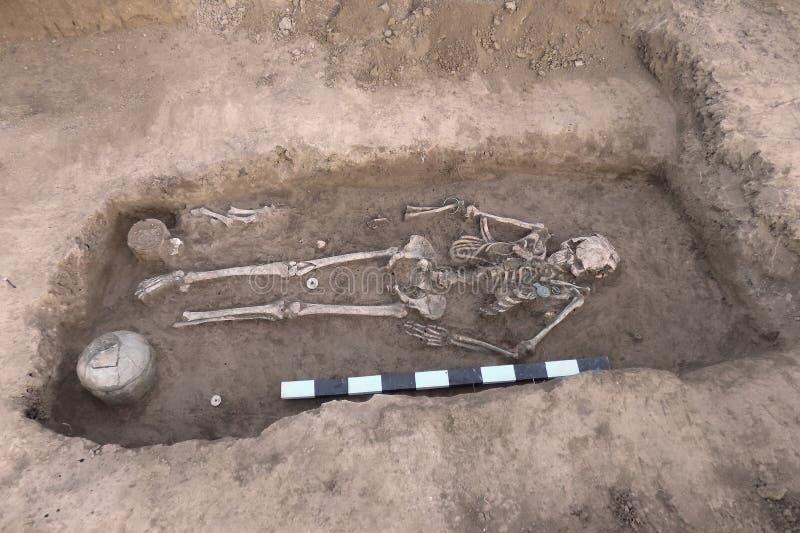 Excavaciones arqueológicas Huesos humanos del esqueleto, cráneos de los restos en la tierra, con los hallazgos en la tumba y el t fotografía de archivo
