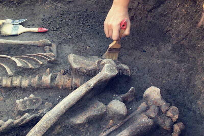 Excavaciones arqueol?gicas E foto de archivo