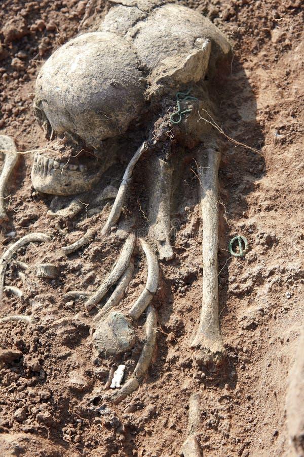 Excavaciones arqueol?gicas El cr?neo humano de los restos es medio en la tierra con los peque?os artefactos de la turquesa encont imagen de archivo libre de regalías