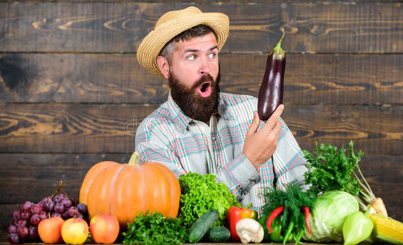 Excellent quality harvest. Grow organic crops. Organic fertilizers make soil and plants healthy and strong. Organic pest royalty free stock photo