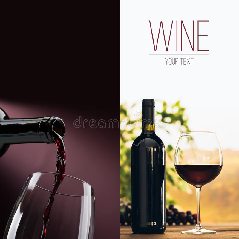 Excellent wine tasting royalty free stock image