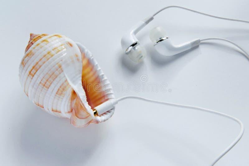 Excentrisk väg att lyssna musik Begrepp - anslutning in i naturen, olikt perspektiv som använder teknologin, fantasi, royaltyfria bilder