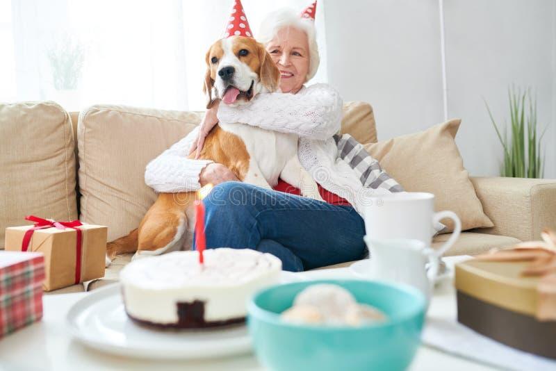 Excited старшее предприниматель празднуя партию собак стоковое фото