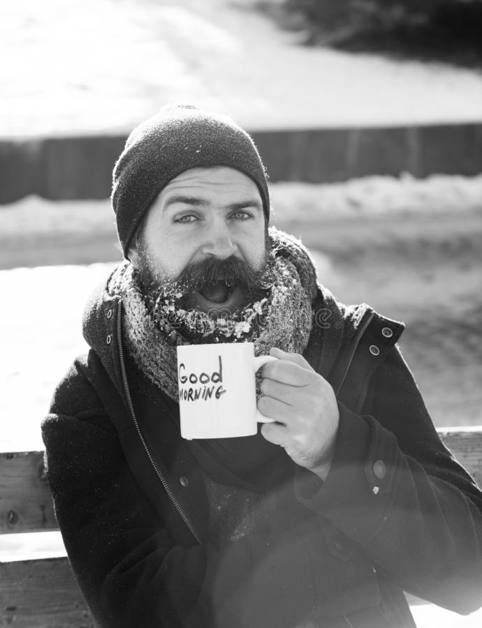 Excited man, bearded hipster with beard and moustache covered with white frost drinks from cup with good morning text. Sitting on wooden bench on snowy winter royalty free stock images