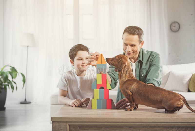 Cheerful family playing together in apartment royalty free stock images