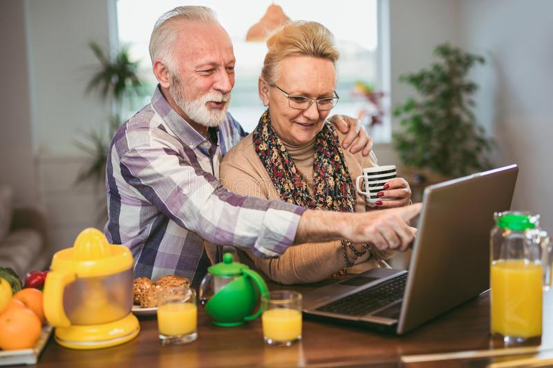 Excited senior couple looking at a laptop together royalty free stock image