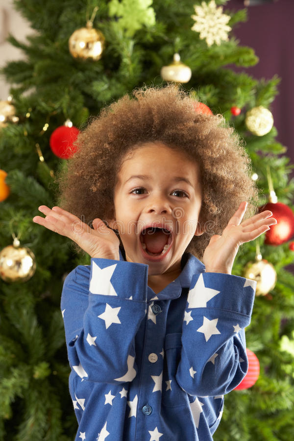 Excited Young Boy In Front Of Christmas Tree royalty free stock images
