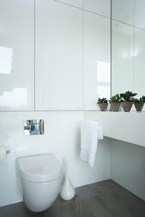 Exclusieve badkamers stock afbeelding. Afbeelding bestaande uit ...