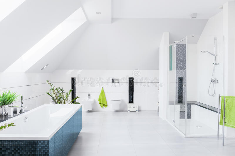 Exclusive bright bathroom royalty free stock images