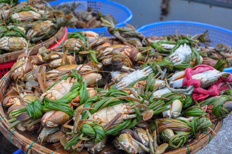 Excremento do mar no mercado da manhã em Hoi An fotos de stock