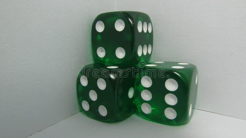 Excrementos verdes fotos de stock