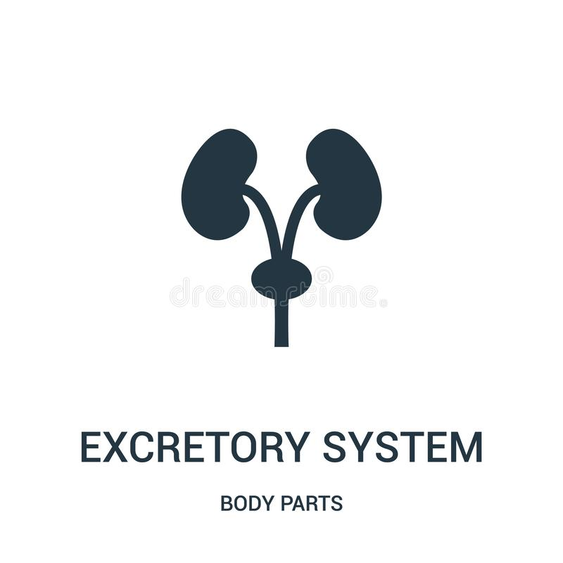 excretory system silhouette icon vector from body parts collection. Thin line excretory system silhouette outline icon vector royalty free illustration