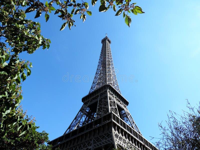 A excursão Eiffel de Eiffel tower/la foto de stock royalty free