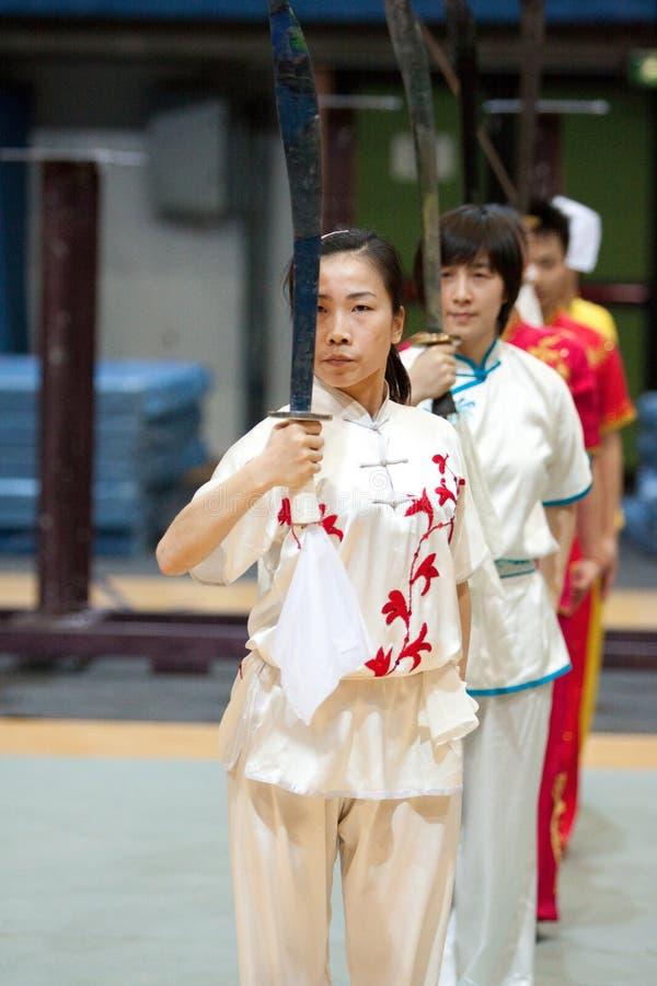 Excursão italiana dos heróis 2010 de Kung Fu imagens de stock
