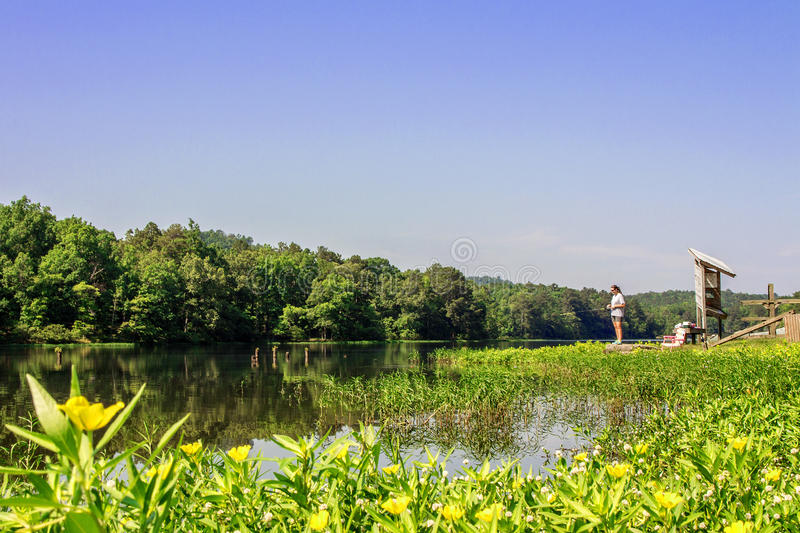 Excursión del verano en parque de estado de la montaña del roble foto de archivo libre de regalías