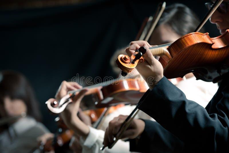 Execução dos violinistas da orquestra sinfônica fotografia de stock royalty free