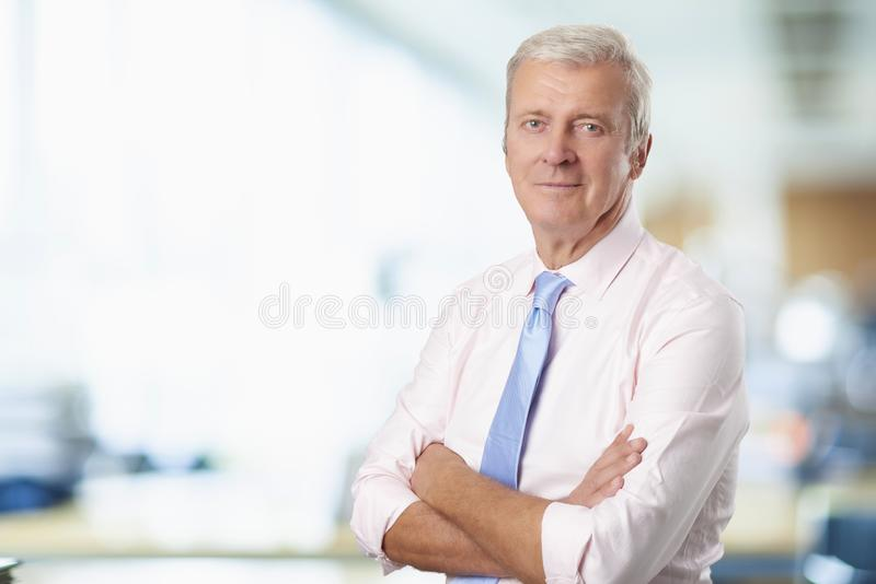 Executive senior businessman royalty free stock images