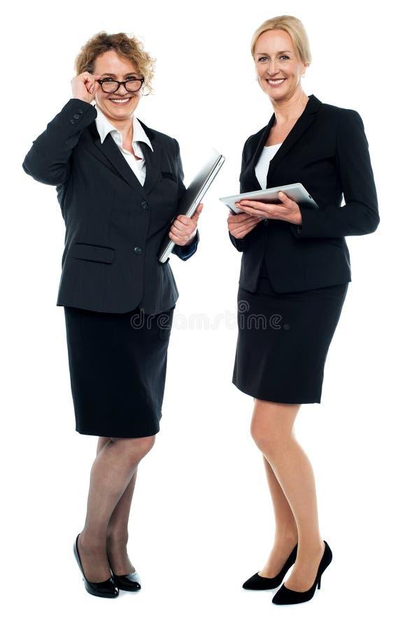 Executivos empresariais sênior imagem de stock royalty free