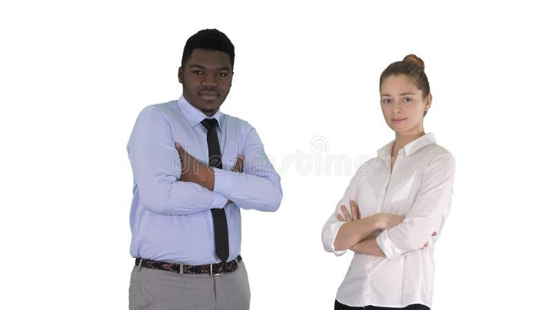 Executivos internacionais que est?o com os bra?os dobrados no fundo branco imagem de stock