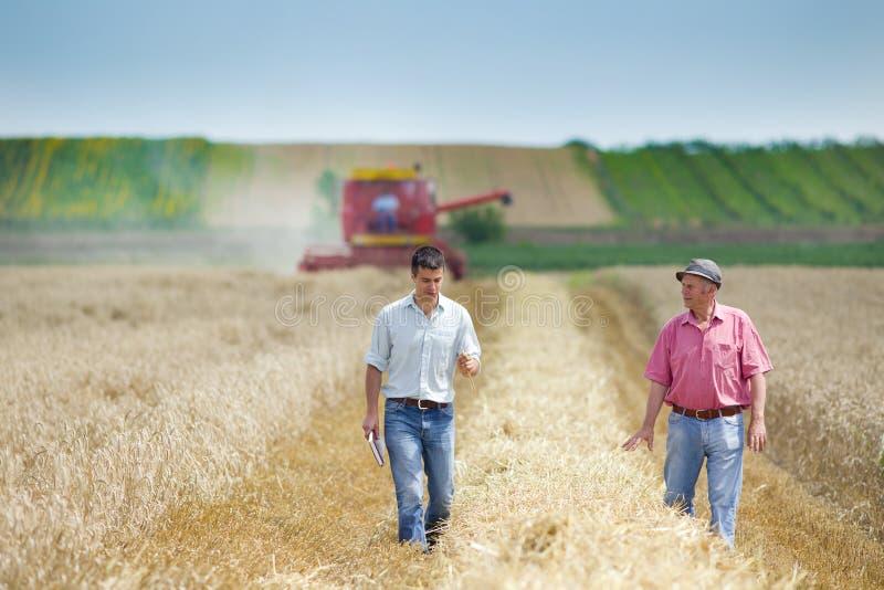 Executivos na terra de exploração agrícola imagem de stock