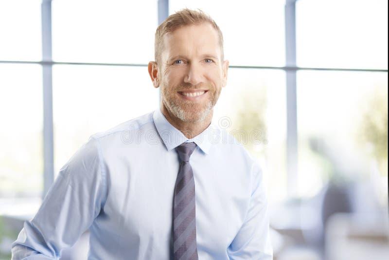 Exekutivmitte gealtertes Geschäftsmannporträt stockfoto