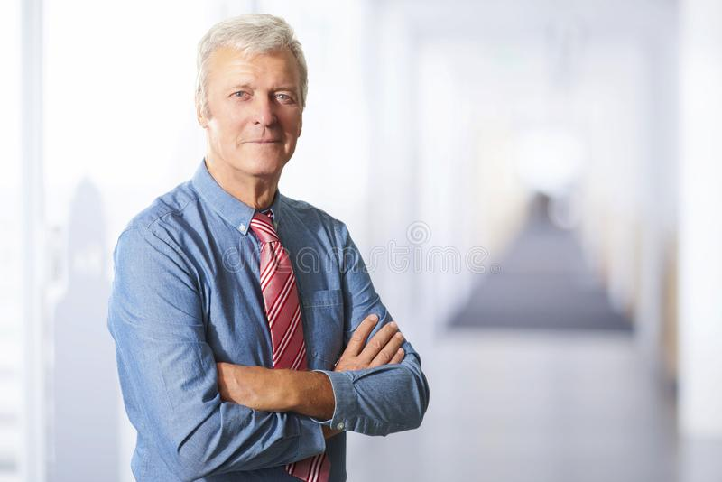 Exekutivsenior manager-Portr?t stockbilder