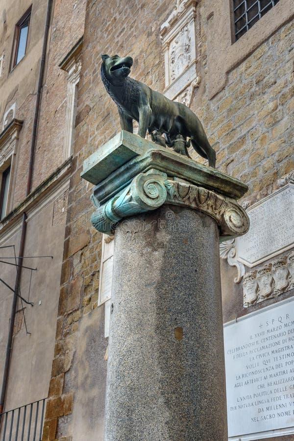 Exemplaar van Capitoline-Wolfsstandbeeld op pijler bij de noordelijke hoek van Palazzo-senatorio rome Italië royalty-vrije stock foto