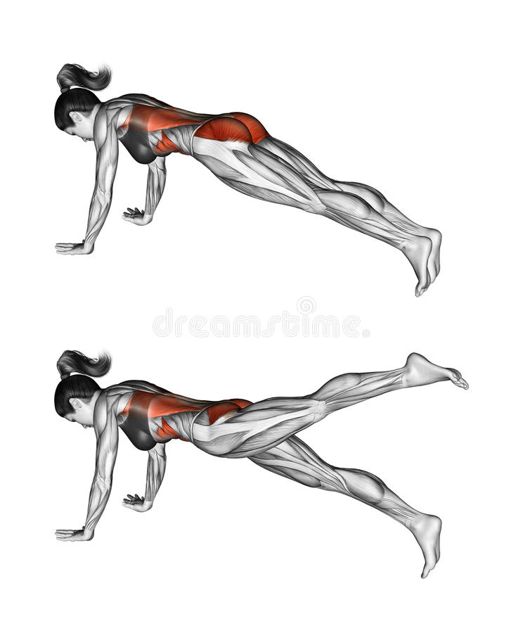 Exercício da aptidão Extensão anca na correia de posição fêmea ilustração do vetor
