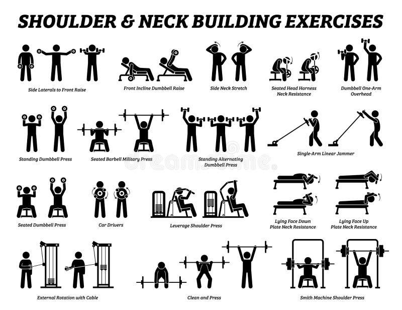 Exercício da construção do ombro e do pescoço e figura de construção pictograma da vara do músculo ilustração royalty free