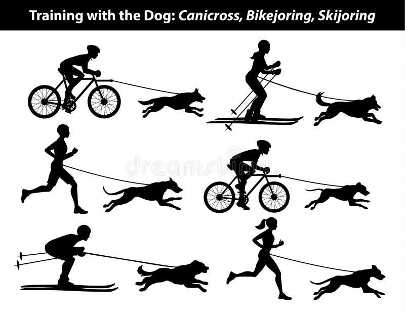 Exercício de formação com cão: canicross, bikejoring, silhuetas skijoring ilustração stock