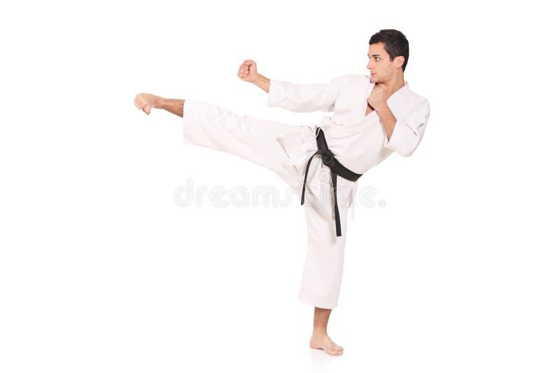 Exercício do homem do karaté fotos de stock royalty free