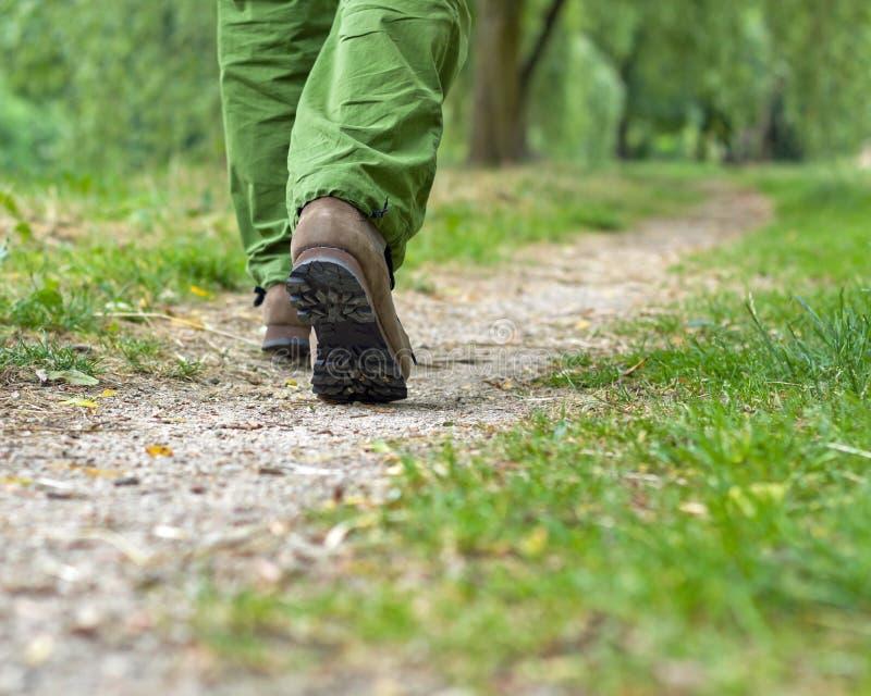 Exercício do homem que anda no parque imagem de stock